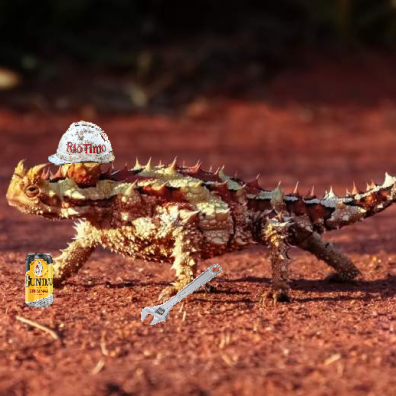 the thorny devils
